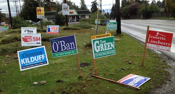 Landscape trashed with political signs.
