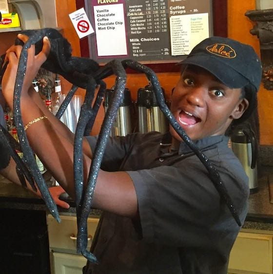 Barista Joslyn is attacked by great Halloween spider.