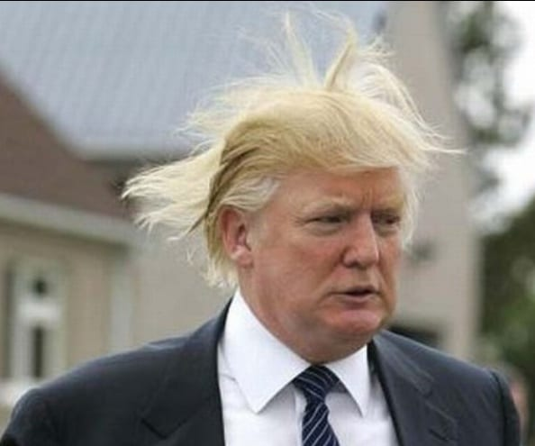 """Republican presidential candidate, Donald Trump throws caution to the wind by displaying the Donald """"Duck"""" Trump comb-over hairstyle."""