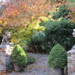 Around the Sound: Colorful leaves still on view